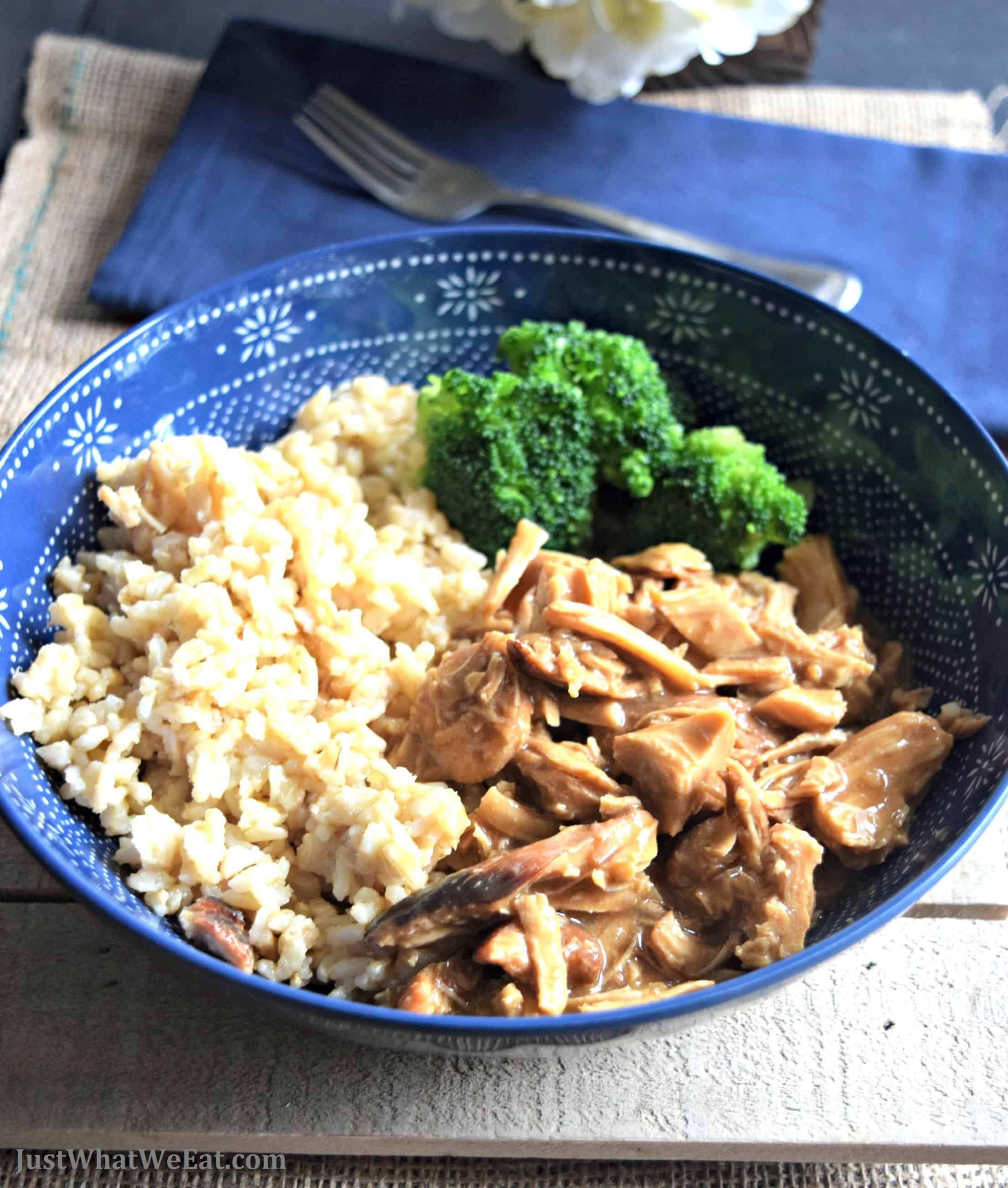 Teriyaki Chicken - Gluten Free, Dairy Free, & Soy Free